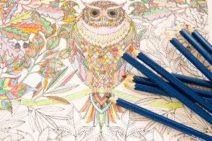 Kolorowanki dla dorosłych – nowa moda? Przekonajmy się