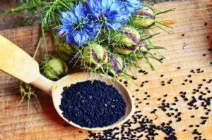 Jakie właściwości lecznicze posiada czarnuszka siewna?